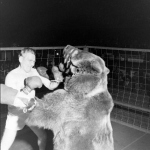 Gus Waldorf Boxing A Bear In 1949 (4)