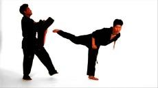 22_back_kick_and_jump_back_kick_xxxlarge (1)